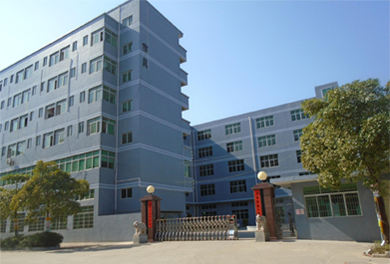 Merged Dongguan factory